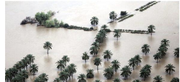 مدیرکل بنیاد مسکن خوزستان :آخرین وضعیت بازسازی مناطق سیلزده و زلزلهزده خوزستان